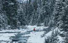 Banff / Jasper
